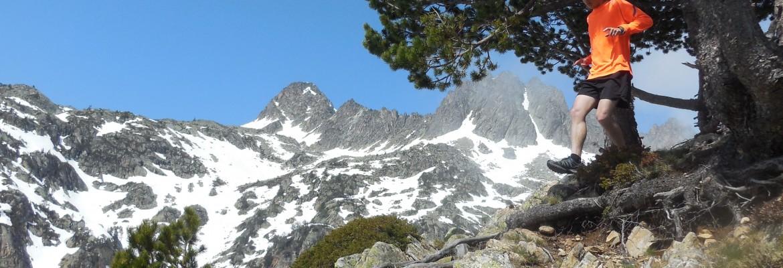 Trail running et marche nordique