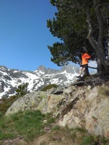 Trail running pyrénées